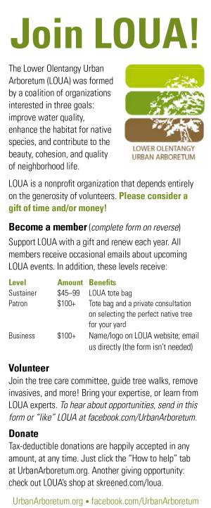 member_form_front_2013